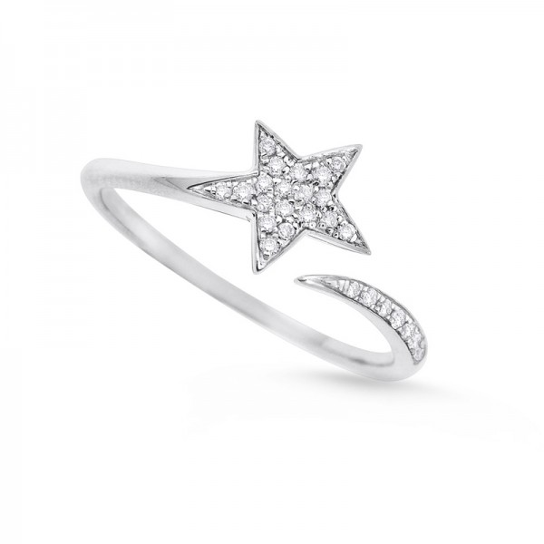 Diamond Star Ring in 14K White Gold with 26 Diamonds Weighing .10ct tw